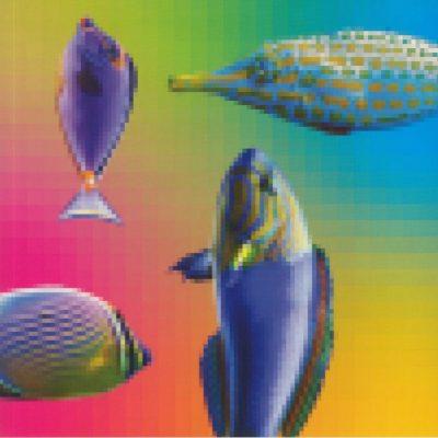 A Visual Brain- 1986-1993 by Toshioki Matsumura